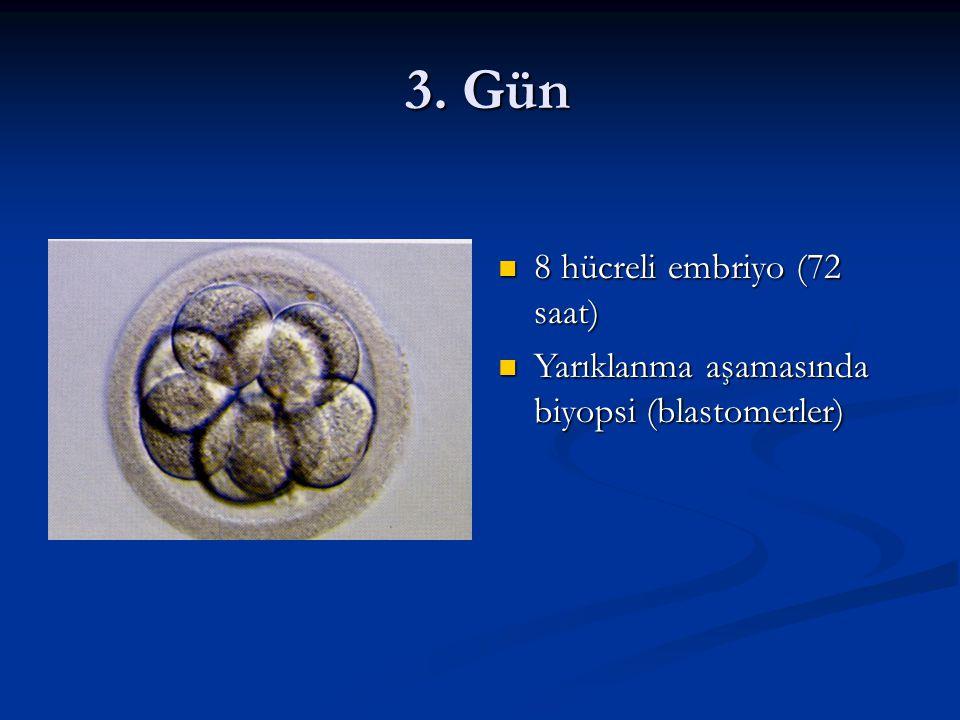3. Gün 3. Gün 8 hücreli embriyo (72 saat) 8 hücreli embriyo (72 saat) Yarıklanma aşamasında biyopsi (blastomerler) Yarıklanma aşamasında biyopsi (blas