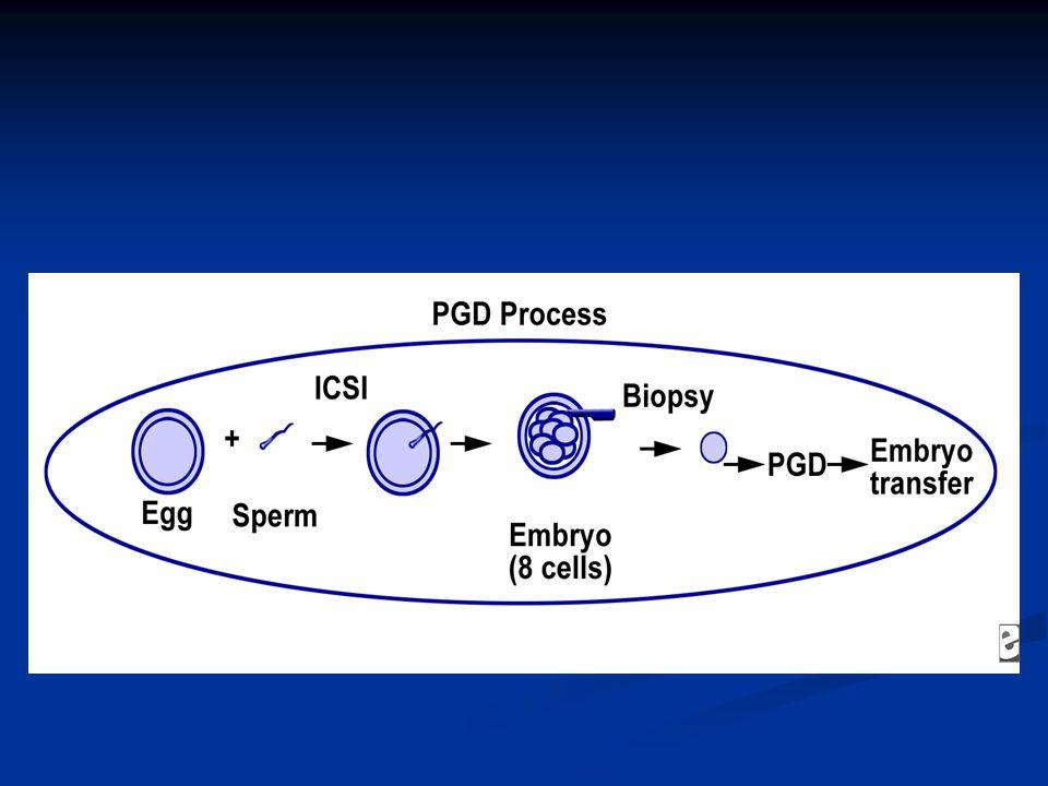 PGD'de PCR Uygulamaları: Otozomal hastalıklarda tek gen defektlerinin belirlenmesi Otozomal hastalıklarda tek gen defektlerinin belirlenmesi Erkek infertilitesinde tek gen defektlerinin belirlenmesinde Erkek infertilitesinde tek gen defektlerinin belirlenmesinde X'e bağlı hastalıklarda cinsiyet tayininde X'e bağlı hastalıklarda cinsiyet tayininde