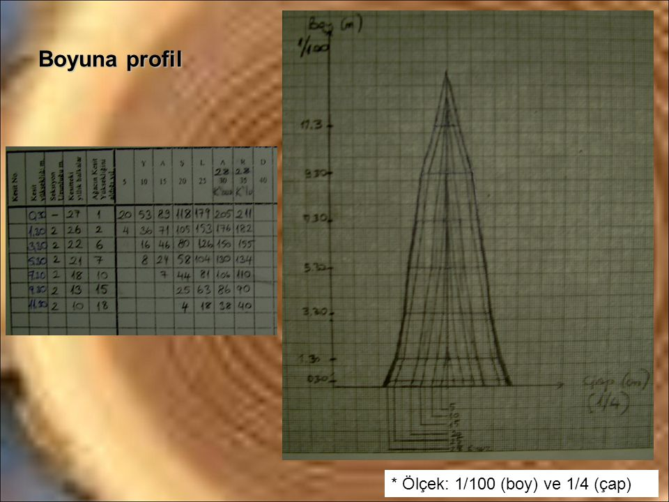 Boyuna profil * Ölçek: 1/100 (boy) ve 1/4 (çap)