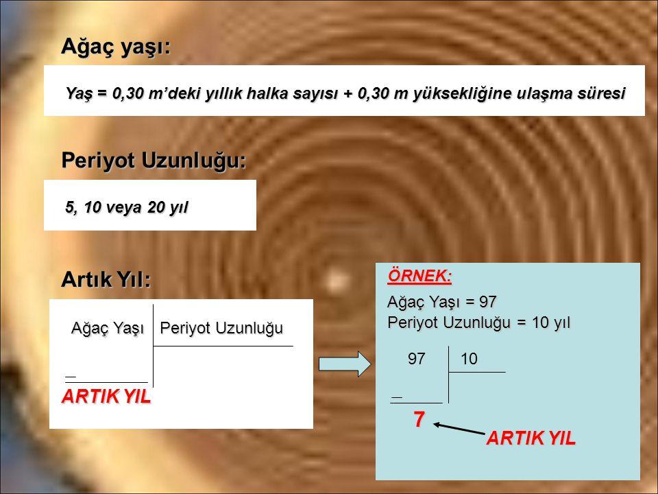 Ağaç yaşı: Yaş = 0,30 m'deki yıllık halka sayısı + 0,30 m yüksekliğine ulaşma süresi Periyot Uzunluğu: 5, 10 veya 20 yıl 5, 10 veya 20 yıl Artık Yıl: