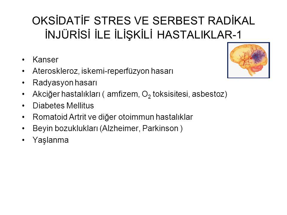 OKSİDATİF STRES VE SERBEST RADİKAL İNJÜRİSİ İLE İLİŞKİLİ HASTALIKLAR-1 Kanser Ateroskleroz, iskemi-reperfüzyon hasarı Radyasyon hasarı Akciğer hastalıkları ( amfizem, O 2 toksisitesi, asbestoz) Diabetes Mellitus Romatoid Artrit ve diğer otoimmun hastalıklar Beyin bozuklukları (Alzheimer, Parkinson ) Yaşlanma