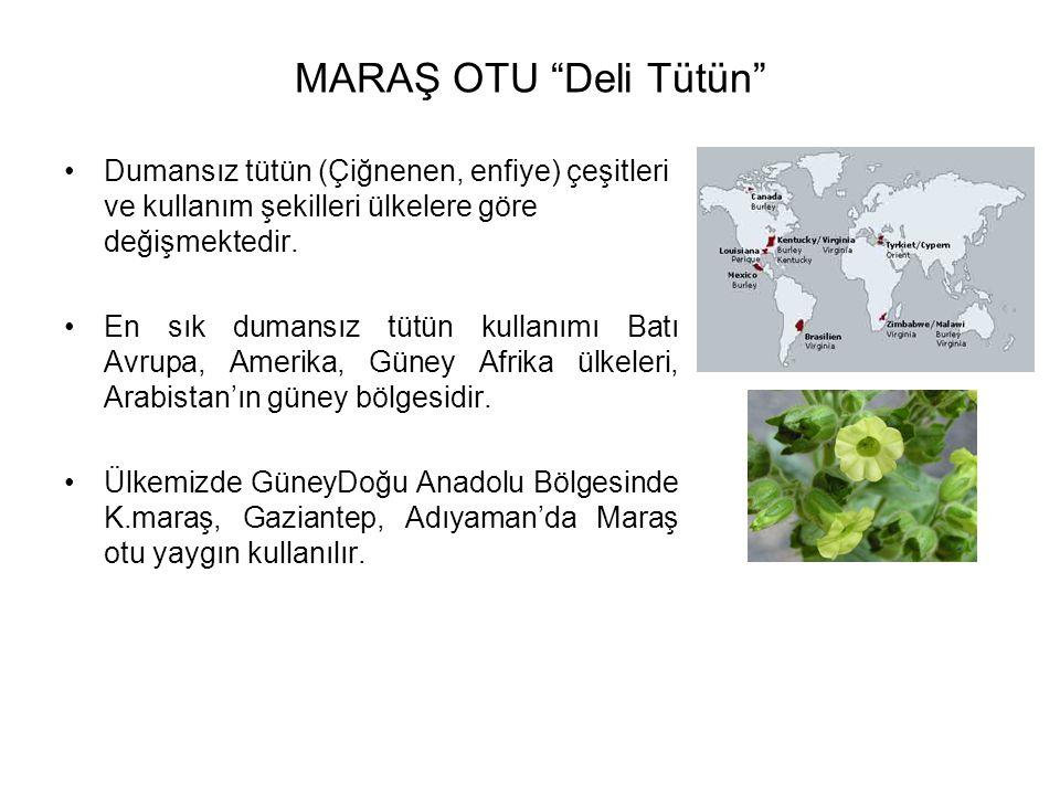 MARAŞ OTU Deli Tütün Dumansız tütün (Çiğnenen, enfiye) çeşitleri ve kullanım şekilleri ülkelere göre değişmektedir.