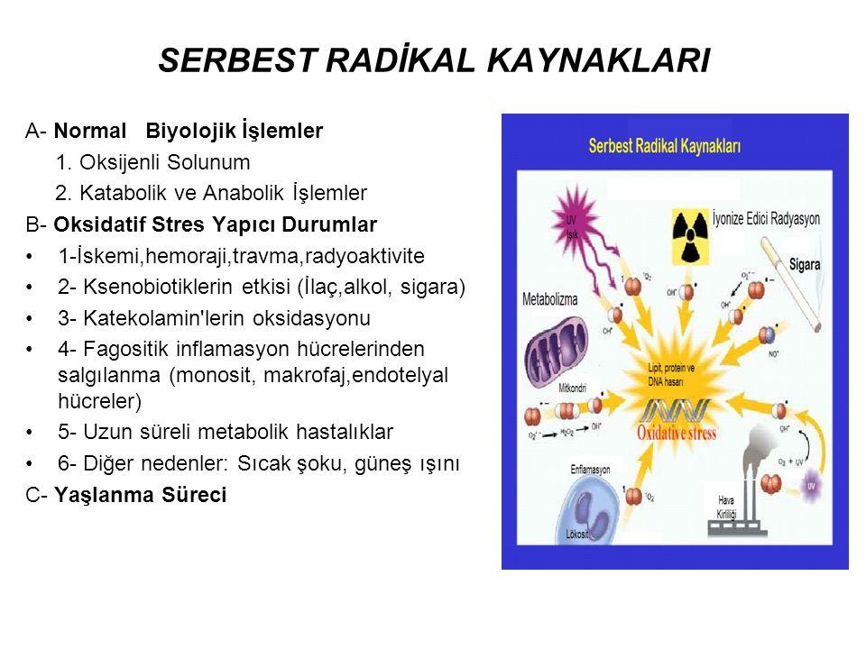 SERBEST RADİKAL KAYNAKLARI A- Normal Biyolojik İşlemler 1. Oksijenli Solunum 2. Katabolik ve Anabolik İşlemler B- Oksidatif Stres Yapıcı Durumlar 1-İs