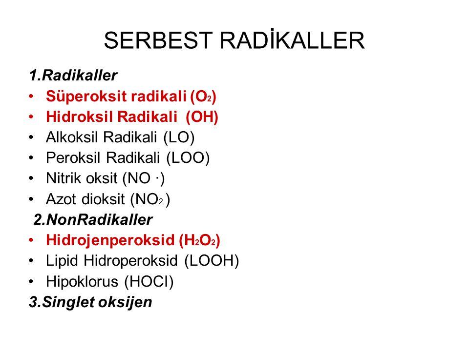 1.Radikaller Süperoksit radikali (O 2 ) Hidroksil Radikali (OH) Alkoksil Radikali (LO) Peroksil Radikali (LOO) Nitrik oksit (NO ·) Azot dioksit (NO 2