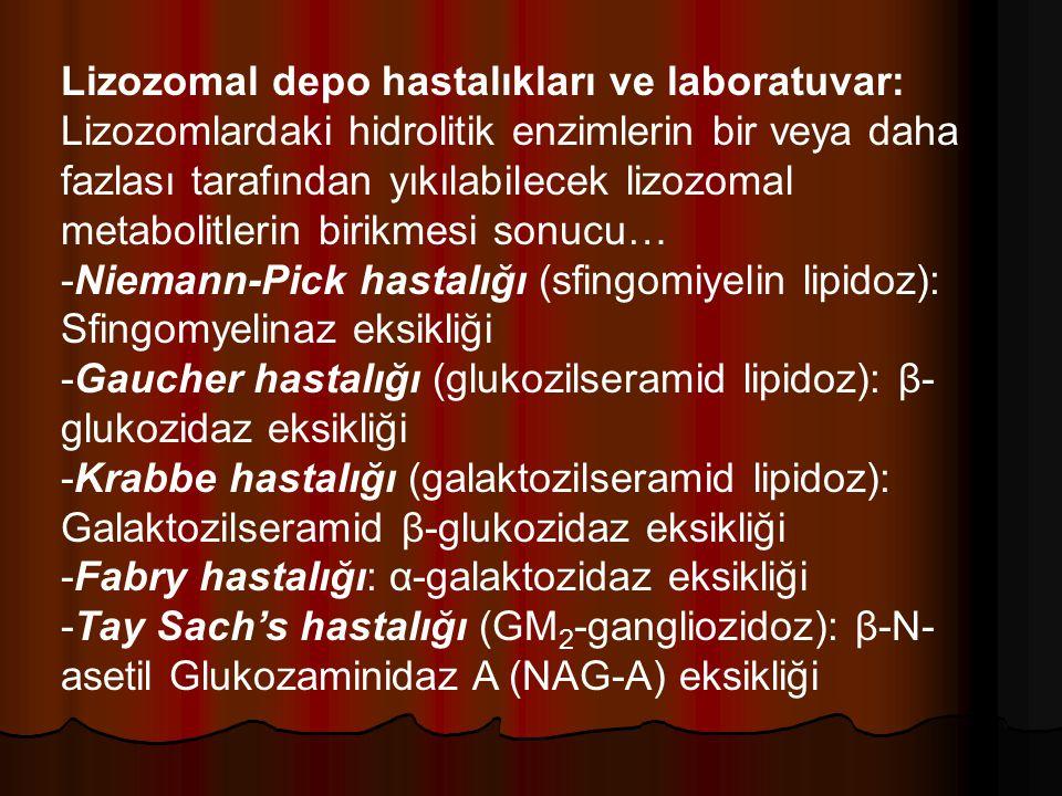 Lizozomal depo hastalıkları ve laboratuvar: Lizozomlardaki hidrolitik enzimlerin bir veya daha fazlası tarafından yıkılabilecek lizozomal metabolitlerin birikmesi sonucu… -Niemann-Pick hastalığı (sfingomiyelin lipidoz): Sfingomyelinaz eksikliği -Gaucher hastalığı (glukozilseramid lipidoz): β- glukozidaz eksikliği -Krabbe hastalığı (galaktozilseramid lipidoz): Galaktozilseramid β-glukozidaz eksikliği -Fabry hastalığı: α-galaktozidaz eksikliği -Tay Sach's hastalığı (GM 2 -gangliozidoz): β-N- asetil Glukozaminidaz A (NAG-A) eksikliği