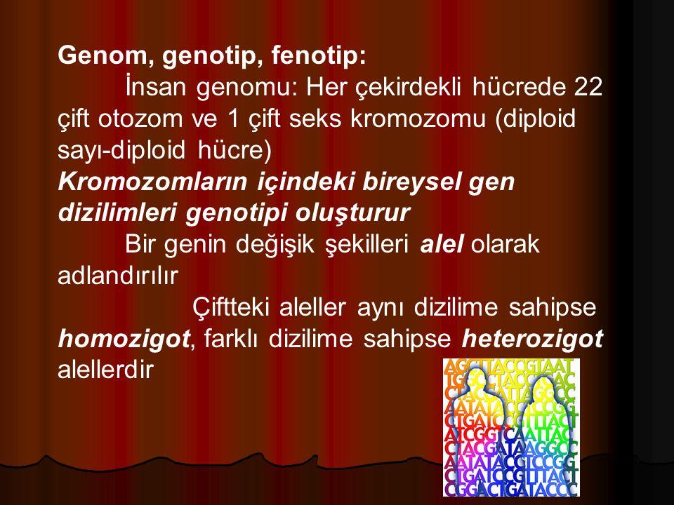 Genom, genotip, fenotip: İnsan genomu: Her çekirdekli hücrede 22 çift otozom ve 1 çift seks kromozomu (diploid sayı-diploid hücre) Kromozomların içindeki bireysel gen dizilimleri genotipi oluşturur Bir genin değişik şekilleri alel olarak adlandırılır Çiftteki aleller aynı dizilime sahipse homozigot, farklı dizilime sahipse heterozigot alellerdir