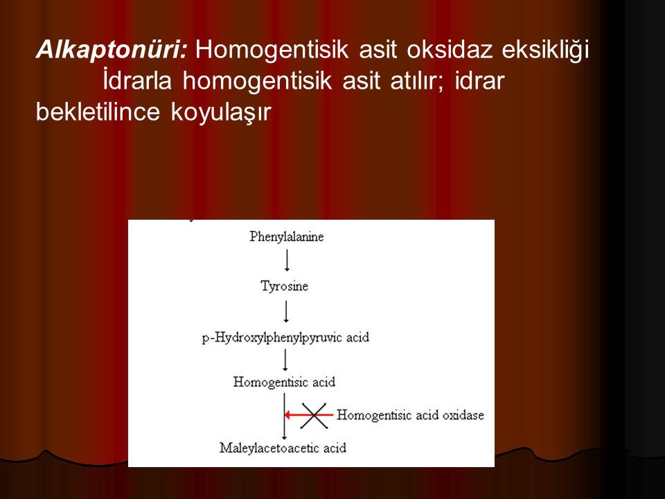 Alkaptonüri: Homogentisik asit oksidaz eksikliği İdrarla homogentisik asit atılır; idrar bekletilince koyulaşır
