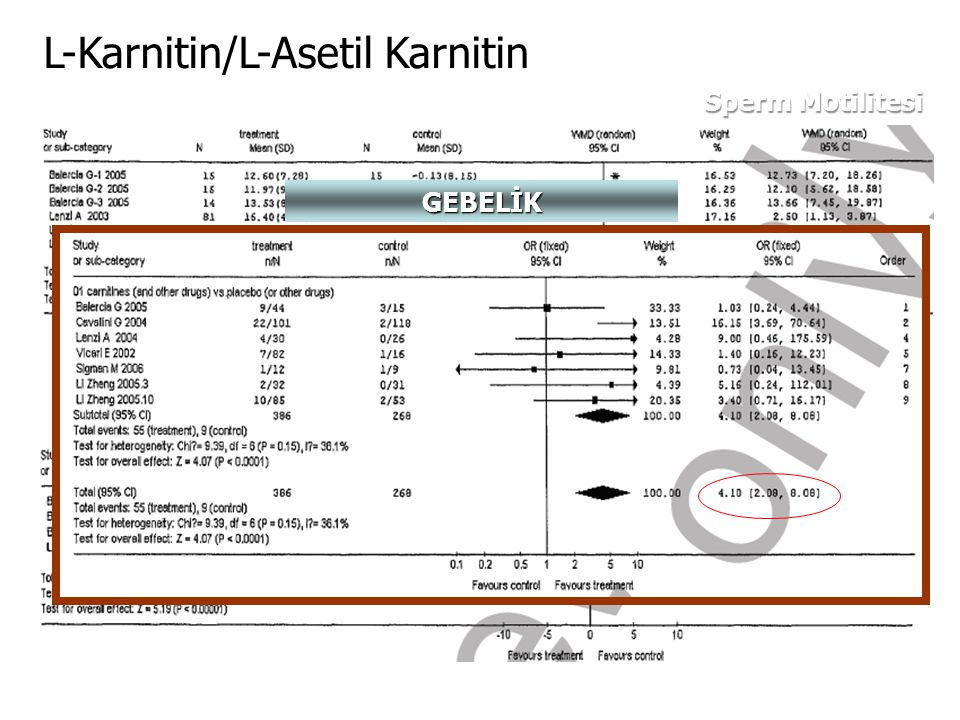 Sperm Motilitesi Sperm Morfolojisi L-Karnitin/L-Asetil Karnitin GEBELİK