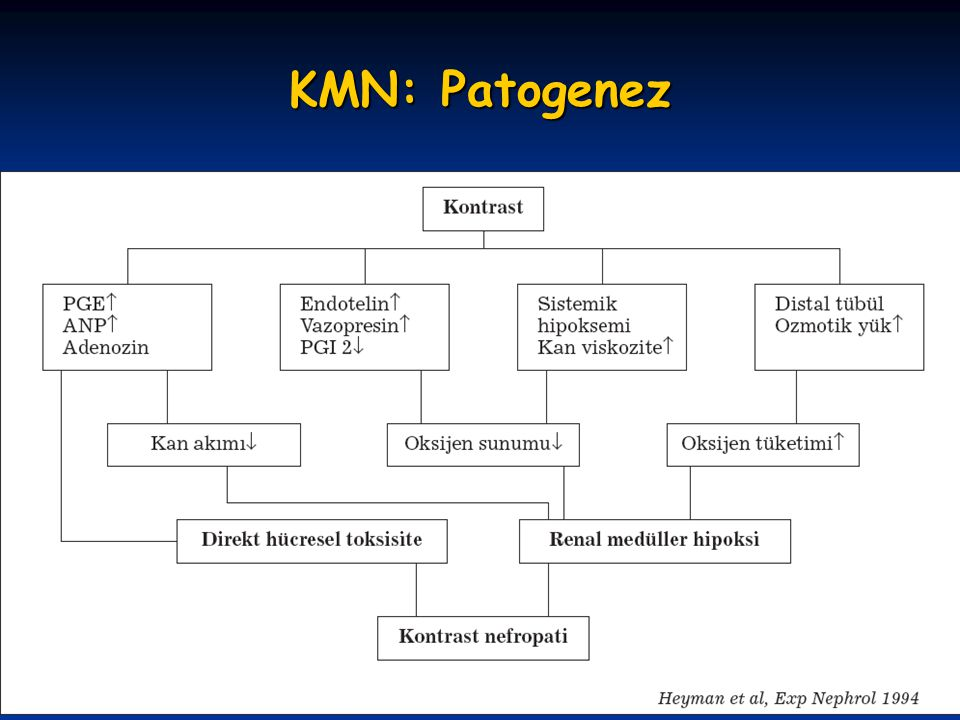 KMN: Patogenez