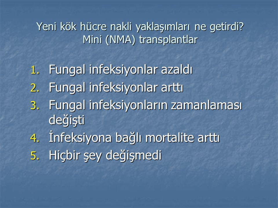 Yeni kök hücre nakli yaklaşımları ne getirdi. Mini (NMA) transplantlar 1.