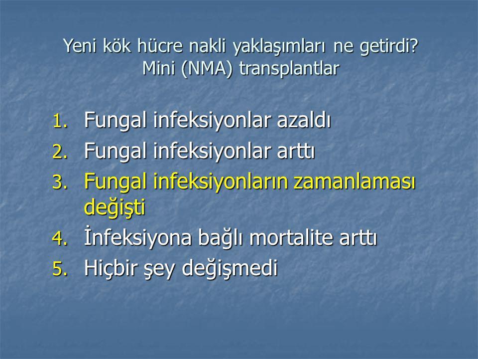 Yeni kök hücre nakli yaklaşımları ne getirdi.Mini (NMA) transplantlar 1.