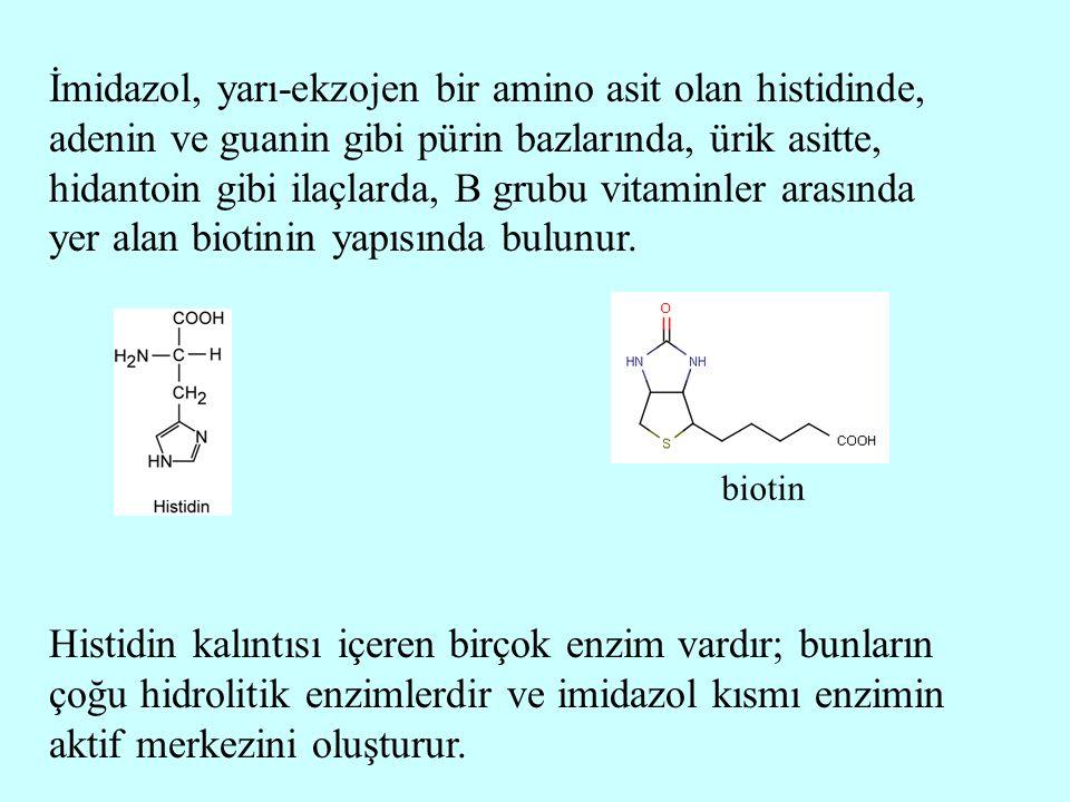 İmidazol, yarı-ekzojen bir amino asit olan histidinde, adenin ve guanin gibi pürin bazlarında, ürik asitte, hidantoin gibi ilaçlarda, B grubu vitaminl