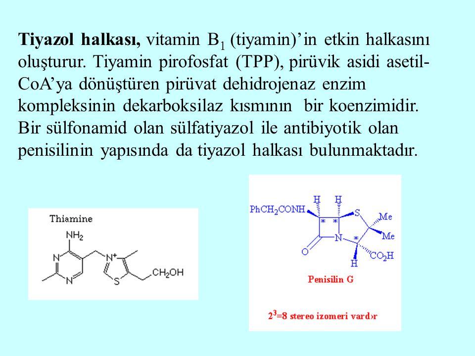 Tiyazol halkası, vitamin B 1 (tiyamin)'in etkin halkasını oluşturur. Tiyamin pirofosfat (TPP), pirüvik asidi asetil- CoA'ya dönüştüren pirüvat dehidro