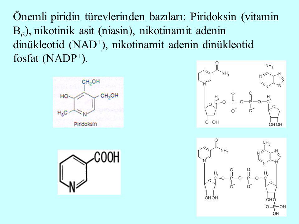 Önemli piridin türevlerinden bazıları: Piridoksin (vitamin B 6 ), nikotinik asit (niasin), nikotinamit adenin dinükleotid (NAD + ), nikotinamit adenin