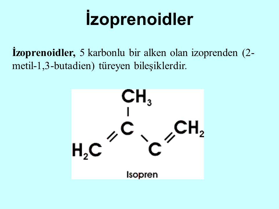 İzoprenoidler İzoprenoidler, 5 karbonlu bir alken olan izoprenden (2- metil-1,3-butadien) türeyen bileşiklerdir.