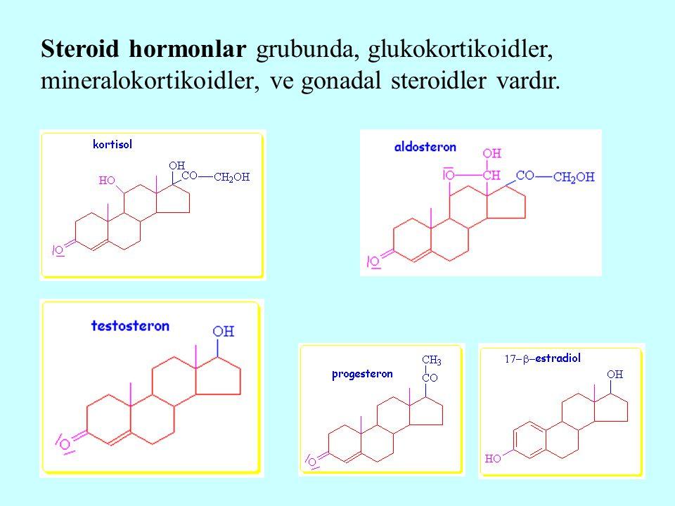 Steroid hormonlar grubunda, glukokortikoidler, mineralokortikoidler, ve gonadal steroidler vardır.