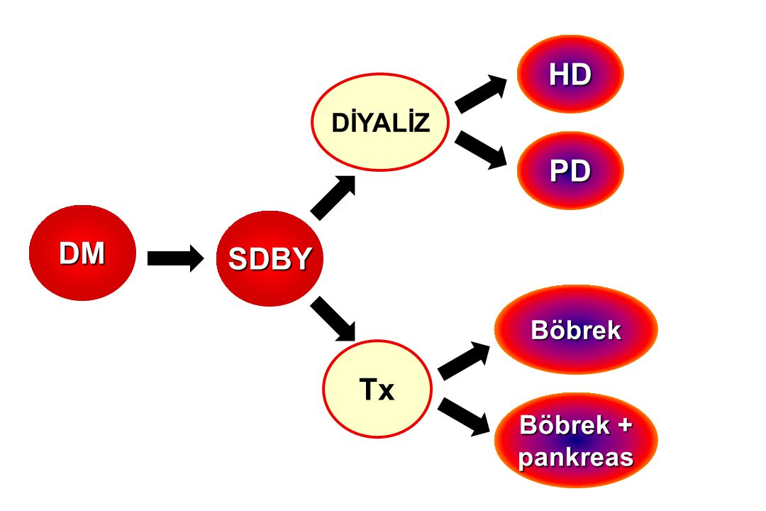 DM SDBY DİYALİZ Tx HD PD Böbrek Böbrek + pankreas