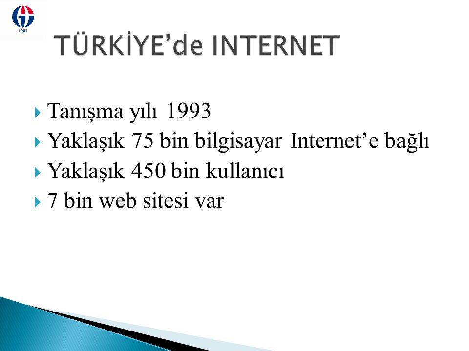  Tanışma yılı 1993  Yaklaşık 75 bin bilgisayar Internet'e bağlı  Yaklaşık 450 bin kullanıcı  7 bin web sitesi var