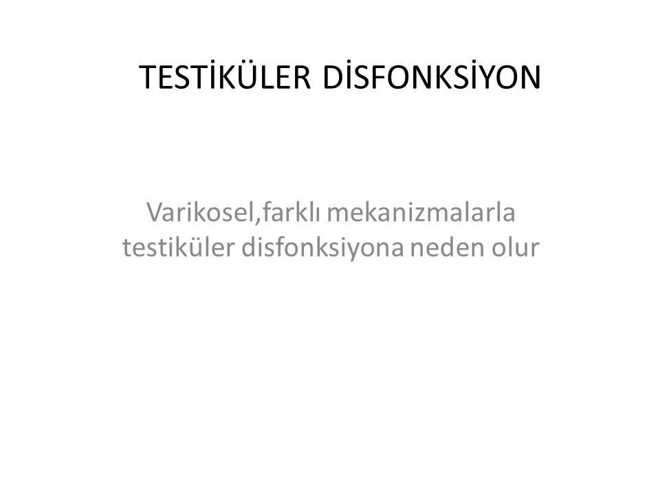 TESTİKÜLER DİSFONKSİYON Varikosel,farklı mekanizmalarla testiküler disfonksiyona neden olur