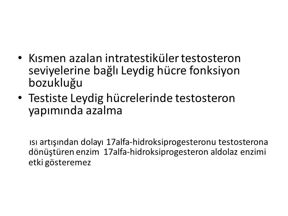 Kısmen azalan intratestiküler testosteron seviyelerine bağlı Leydig hücre fonksiyon bozukluğu Testiste Leydig hücrelerinde testosteron yapımında azalm