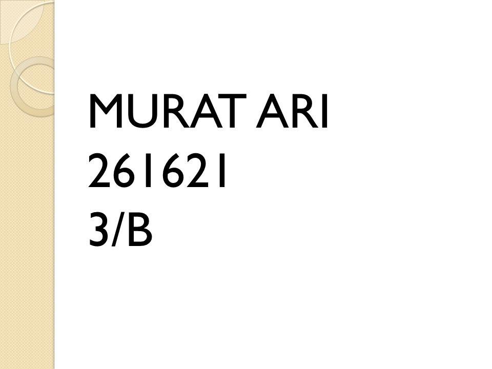 MURAT ARI 261621 3/B