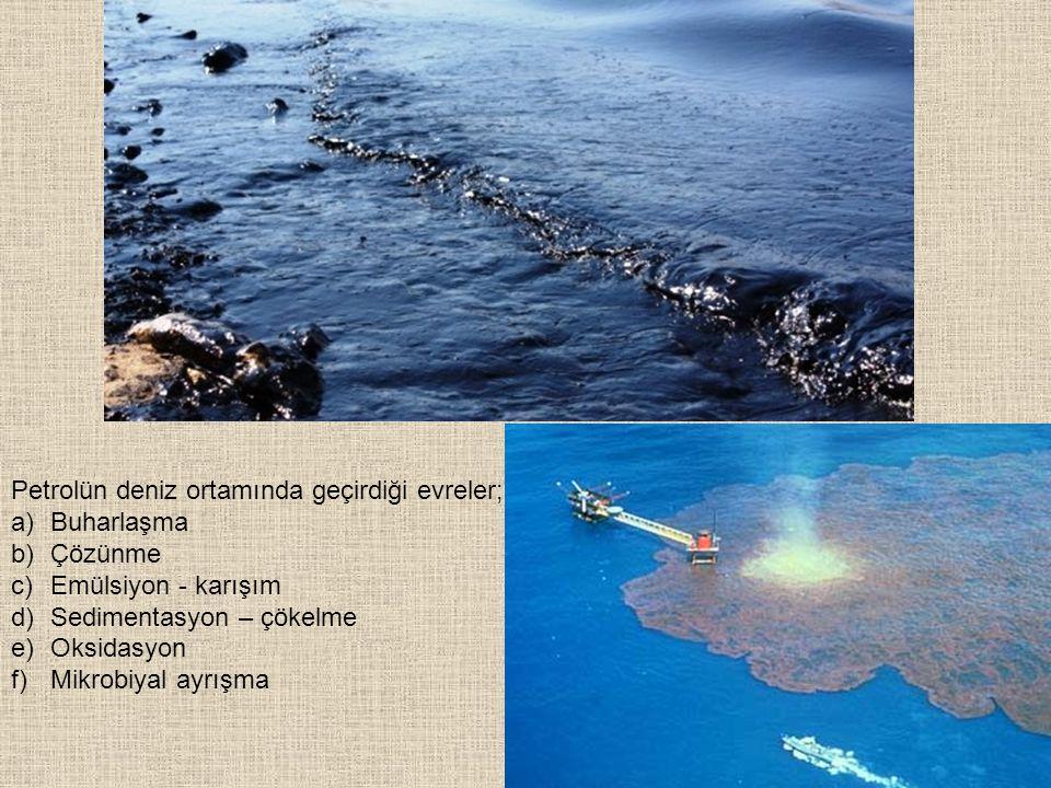 Petrolün deniz ortamında geçirdiği evreler; a)Buharlaşma b)Çözünme c)Emülsiyon - karışım d)Sedimentasyon – çökelme e)Oksidasyon f)Mikrobiyal ayrışma