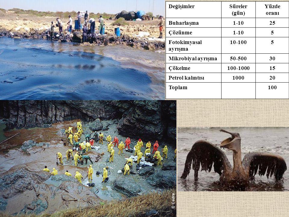 DeğişimlerSüreler (gün) Yüzde oranı Buharlaşma1-1025 Çözünme1-105 Fotokimyasal ayrışma 10-1005 Mikrobiyal ayrışma50-50030 Çökelme100-100015 Petrol kal