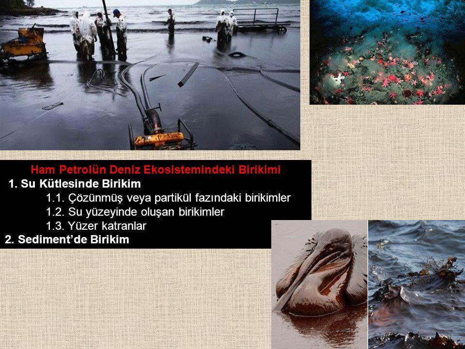 Ham Petrolün Deniz Ekosistemindeki Birikimi 1. Su Kütlesinde Birikim 1.1. Çözünmüş veya partikül fazındaki birikimler 1.2. Su yüzeyinde oluşan birikim