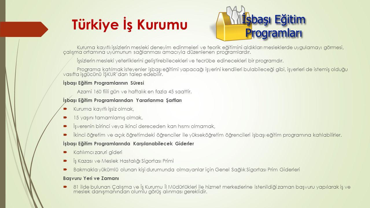 Türkiye İş Kurumu Kuruma kayıtlı işsizlerin mesleki deneyim edinmeleri ve teorik eğitimini aldıkları mesleklerde uygulamayı görmesi, çalışma ortamına