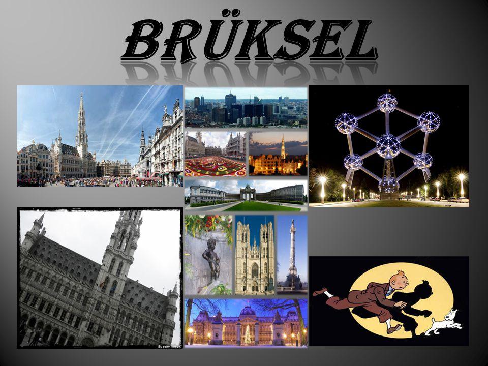 Bruksel Belcika nın baskentidir.