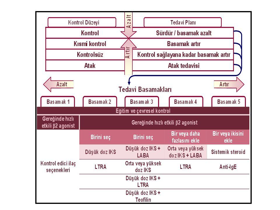 Astım tedavisinde beklentiler/hedefler Semptomların kontrol altına alınması Akciğer fonksiyonlarının düzelmesi Atak gelişme riskinin önlenmesi Akciğer fonksiyonlarında kayıp riskinin azalması Yan etki riskinin azalması/olmaması NAEPP-EPR3: 2007