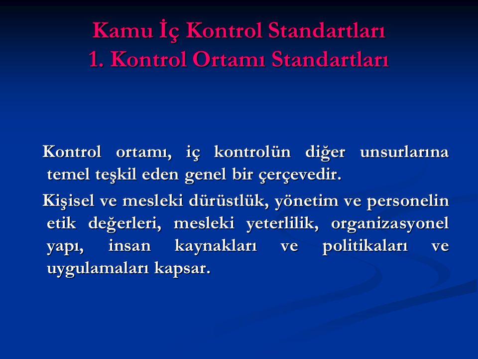 Kamu İç Kontrol Standartları 1.
