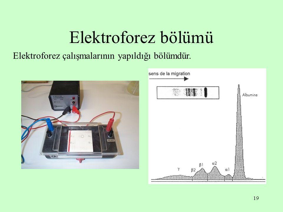 19 Elektroforez bölümü Elektroforez çalışmalarının yapıldığı bölümdür.