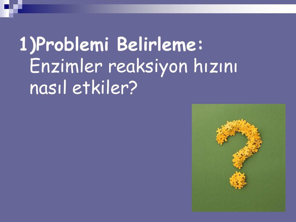 1)Problemi Belirleme: Enzimler reaksiyon hızını nasıl etkiler?