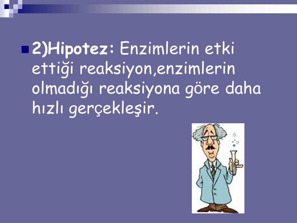 2)Hipotez: Enzimlerin etki ettiği reaksiyon,enzimlerin olmadığı reaksiyona g ö re daha hızlı ger ç ekleşir.