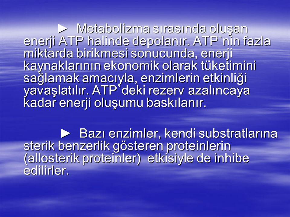 ► Metabolizma sırasında oluşan enerji ATP halinde depolanır.