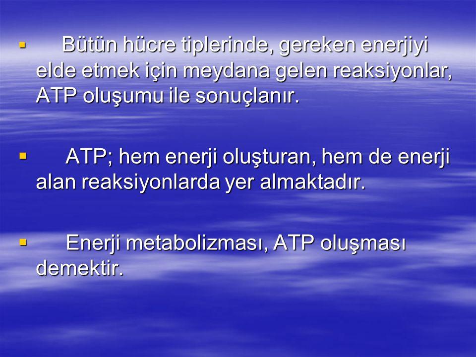  Bütün hücre tiplerinde, gereken enerjiyi elde etmek için meydana gelen reaksiyonlar, ATP oluşumu ile sonuçlanır.