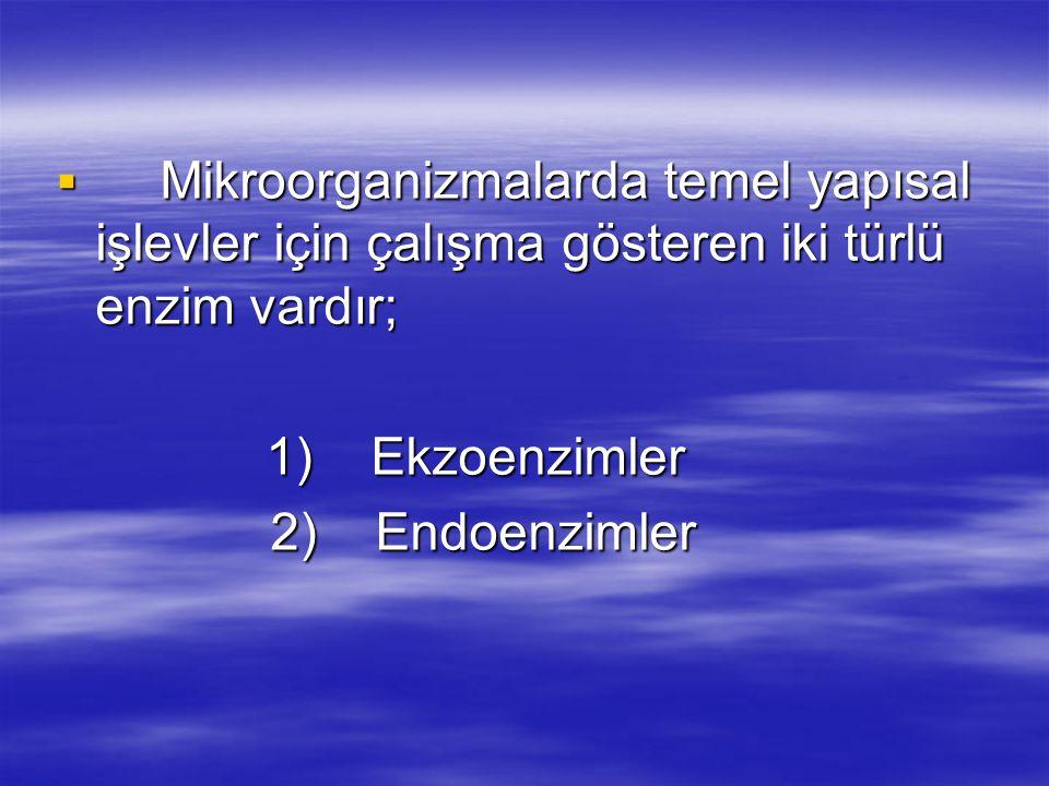  Mikroorganizmalarda temel yapısal işlevler için çalışma gösteren iki türlü enzim vardır; 1) Ekzoenzimler 1) Ekzoenzimler 2) Endoenzimler 2) Endoenzimler