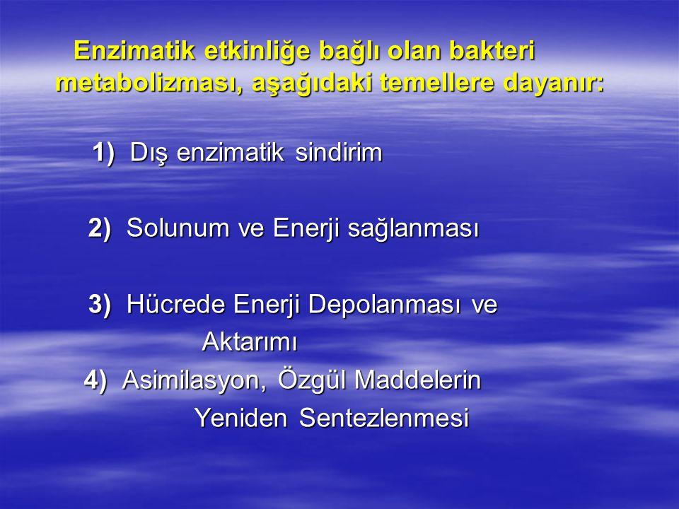 Enzimatik etkinliğe bağlı olan bakteri metabolizması, aşağıdaki temellere dayanır: Enzimatik etkinliğe bağlı olan bakteri metabolizması, aşağıdaki temellere dayanır: 1) Dış enzimatik sindirim 1) Dış enzimatik sindirim 2) Solunum ve Enerji sağlanması 2) Solunum ve Enerji sağlanması 3) Hücrede Enerji Depolanması ve 3) Hücrede Enerji Depolanması ve Aktarımı Aktarımı 4) Asimilasyon, Özgül Maddelerin 4) Asimilasyon, Özgül Maddelerin Yeniden Sentezlenmesi Yeniden Sentezlenmesi