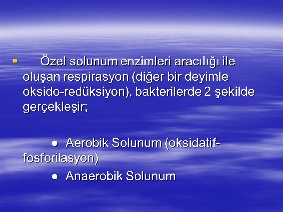  Özel solunum enzimleri aracılığı ile oluşan respirasyon (diğer bir deyimle oksido-redüksiyon), bakterilerde 2 şekilde gerçekleşir; ● Aerobik Solunum (oksidatif- fosforilasyon) ● Aerobik Solunum (oksidatif- fosforilasyon) ● Anaerobik Solunum ● Anaerobik Solunum