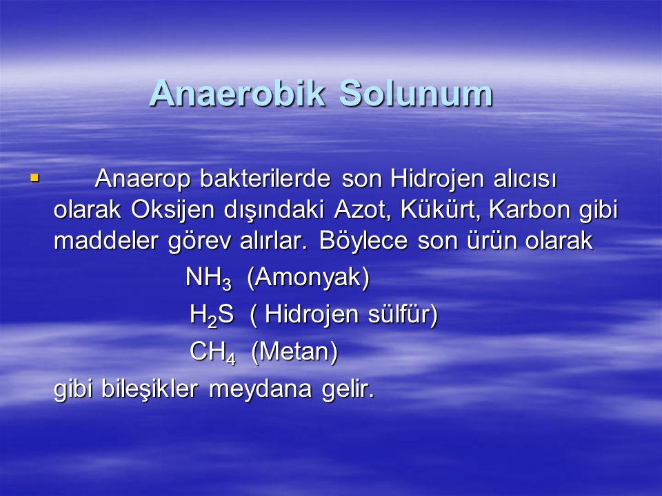 Anaerobik Solunum  Anaerop bakterilerde son Hidrojen alıcısı olarak Oksijen dışındaki Azot, Kükürt, Karbon gibi maddeler görev alırlar.
