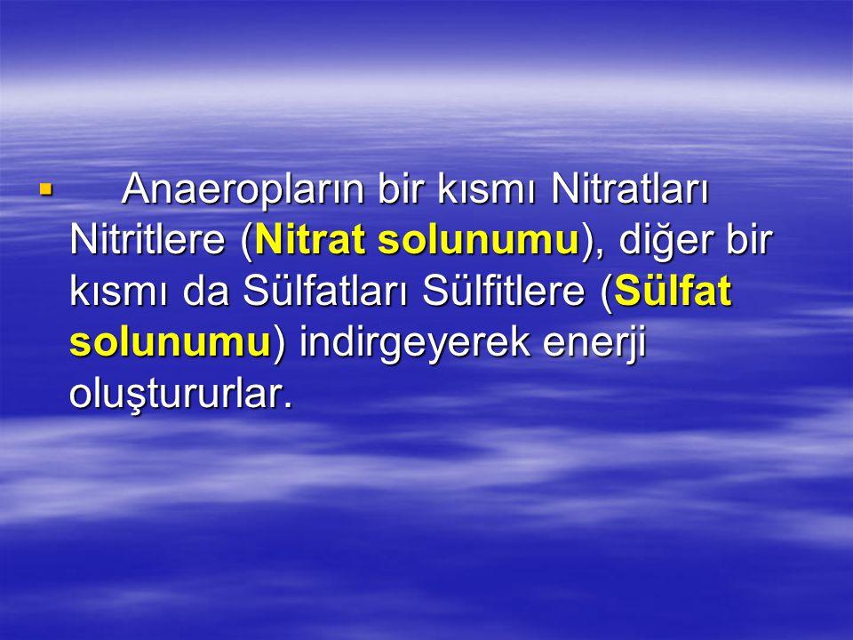  Anaeropların bir kısmı Nitratları Nitritlere (Nitrat solunumu), diğer bir kısmı da Sülfatları Sülfitlere (Sülfat solunumu) indirgeyerek enerji oluştururlar.