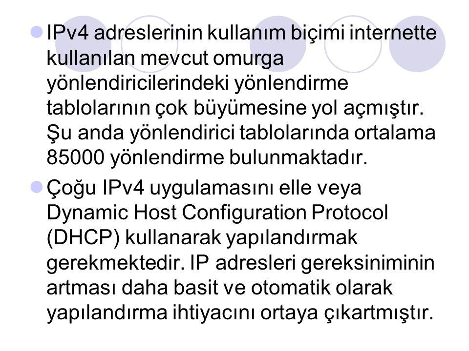 IPv4 adreslerinin kullanım biçimi internette kullanılan mevcut omurga yönlendiricilerindeki yönlendirme tablolarının çok büyümesine yol açmıştır. Şu a