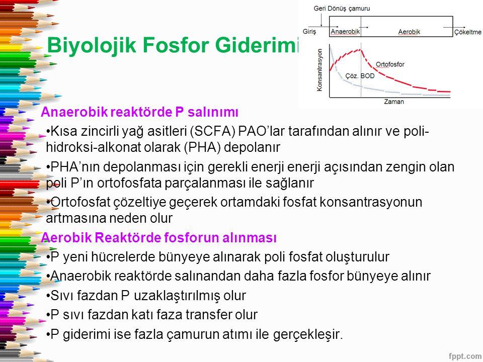 Biyolojik Fosfor Giderimi Anaerobik reaktörde P salınımı Kısa zincirli yağ asitleri (SCFA) PAO'lar tarafından alınır ve poli- hidroksi-alkonat olarak