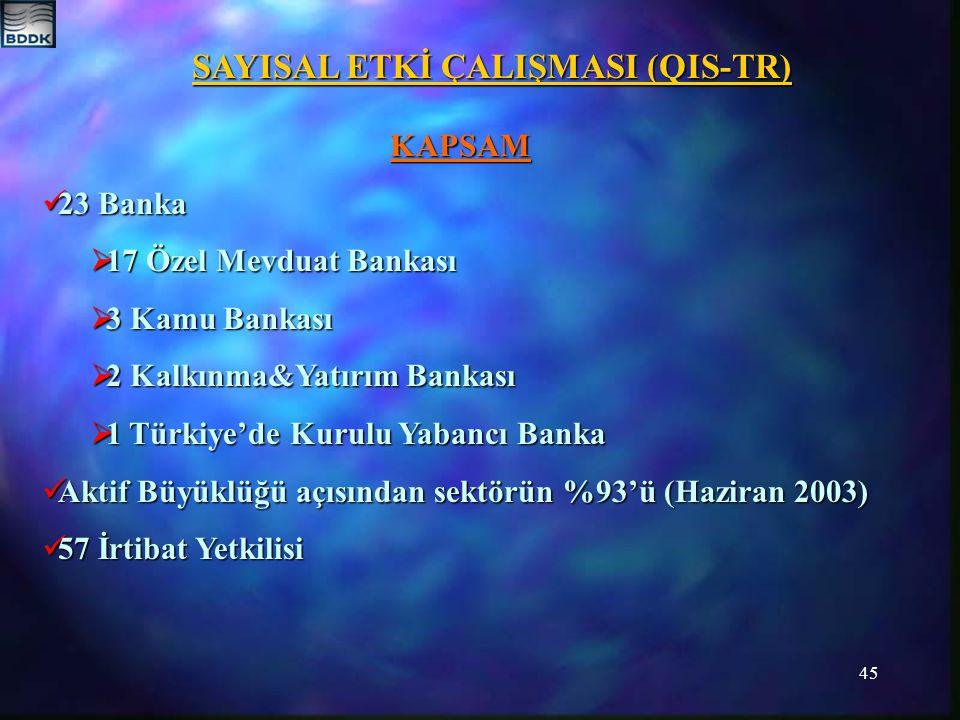 45 SAYISAL ETKİ ÇALIŞMASI (QIS-TR) KAPSAM 23 Banka 23 Banka  17 Özel Mevduat Bankası  3 Kamu Bankası  2 Kalkınma&Yatırım Bankası  1 Türkiye'de Kurulu Yabancı Banka Aktif Büyüklüğü açısından sektörün %93'ü (Haziran 2003) Aktif Büyüklüğü açısından sektörün %93'ü (Haziran 2003) 57 İrtibat Yetkilisi 57 İrtibat Yetkilisi