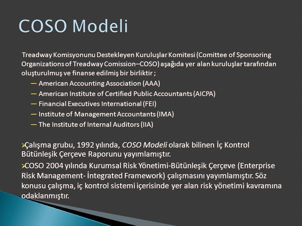 Treadway Komisyonunu Destekleyen Kuruluşlar Komitesi (Comittee of Sponsoring Organizations of Treadway Comission–COSO) aşağıda yer alan kuruluşlar tar