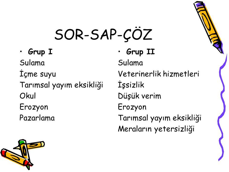 SOR-SAP-ÇÖZ Grup I Sulama İçme suyu Tarımsal yayım eksikliği Okul Erozyon Pazarlama Grup II Sulama Veterinerlik hizmetleri İşsizlik Düşük verim Erozyon Tarımsal yayım eksikliği Meraların yetersizliği