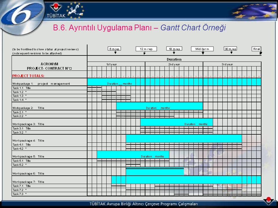 B.6. Ayrıntılı Uygulama Planı – Gantt Chart Örneği
