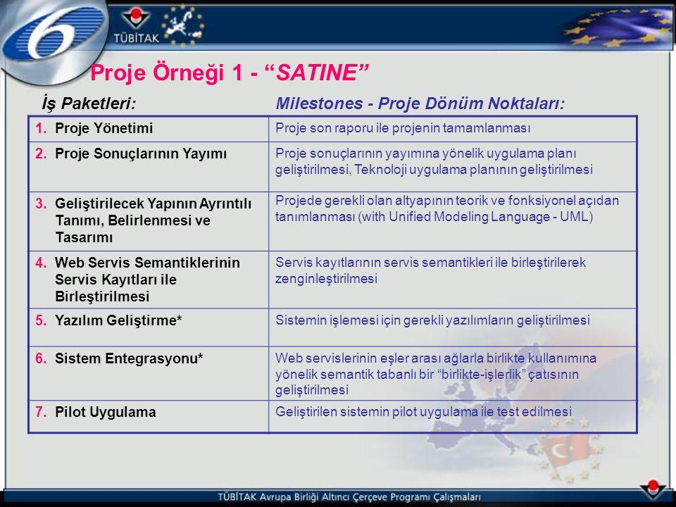 """Proje Örneği 1 - """"SATINE"""" İş Paketleri:Milestones - Proje Dönüm Noktaları: 1.Proje Yönetimi Proje son raporu ile projenin tamamlanması 2.Proje Sonuçla"""