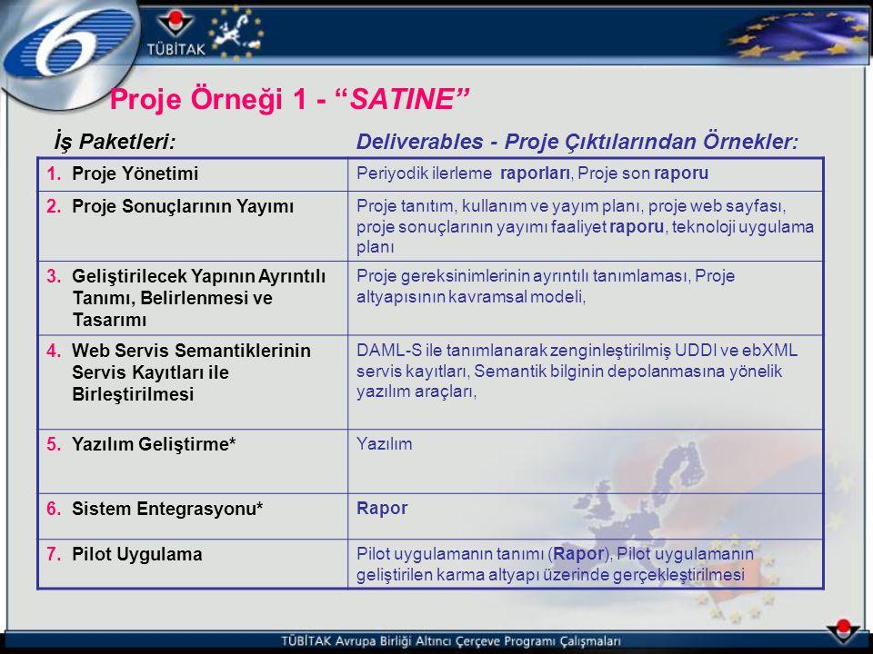 """Proje Örneği 1 - """"SATINE"""" İş Paketleri:Deliverables - Proje Çıktılarından Örnekler: 1.Proje Yönetimi Periyodik ilerleme raporları, Proje son raporu 2."""